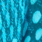 ブルーの羽柄プリントシルクサテン